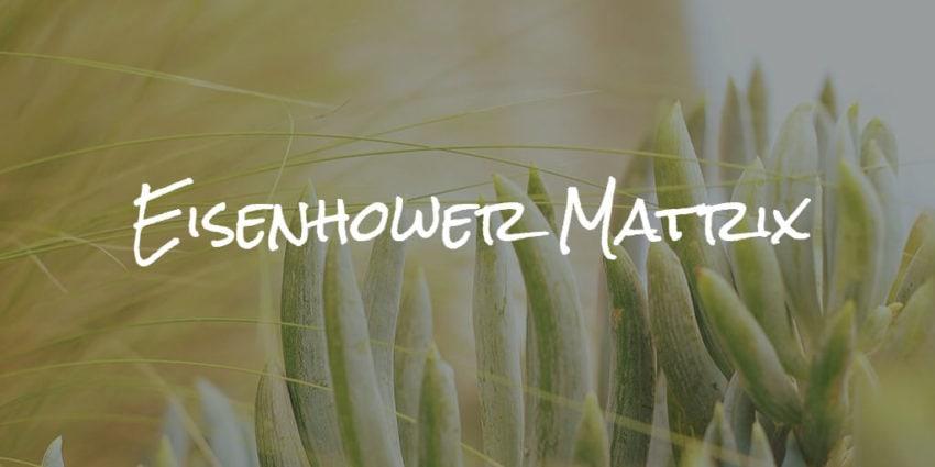 eisenhower matrix - technique for time management and productivity