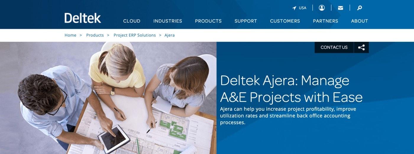 deltek pm software example